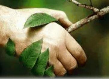 [HAPPY TEST] #1 La naturopathie ? J'ai testé pour vous !